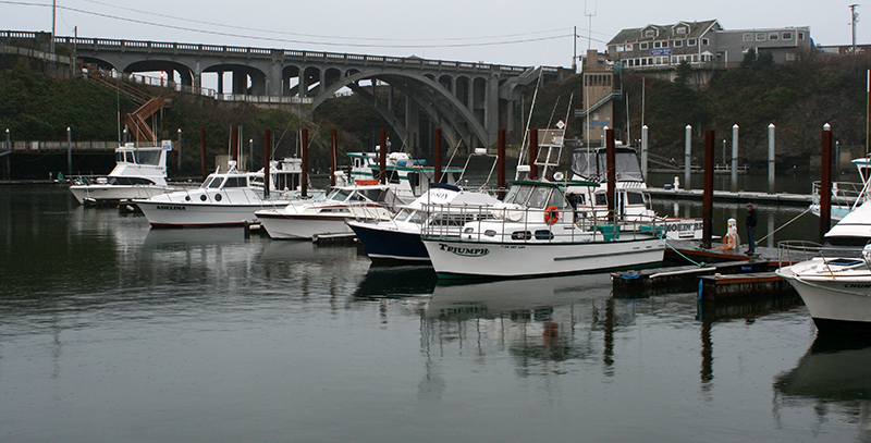 Bridge And Boats As Seen From The Dock